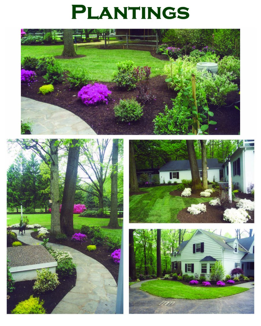 Plantings by complete landscape design